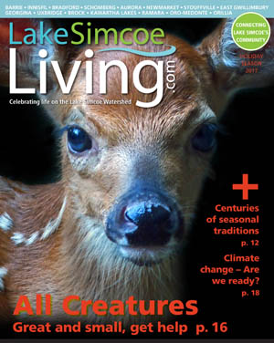 2017 Holiday Issue Lake Simcoe Living