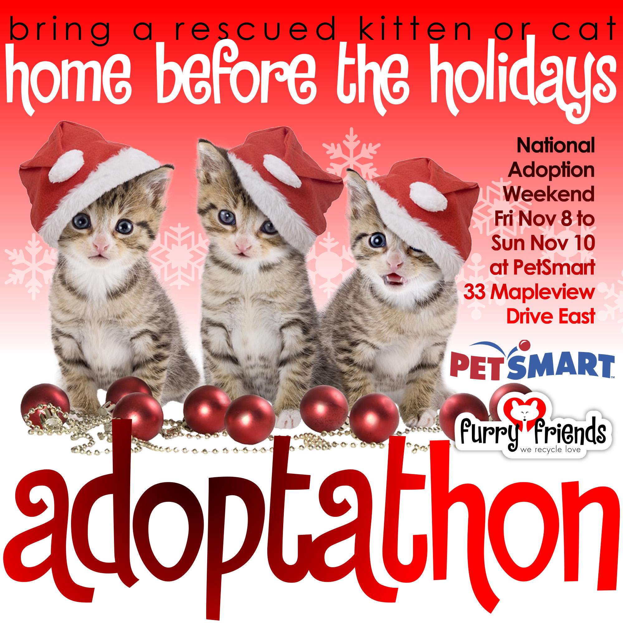Furry Friends' PetSmart Adoptathon Nov. 8th to 10th