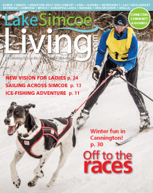 LSL JF15 cover